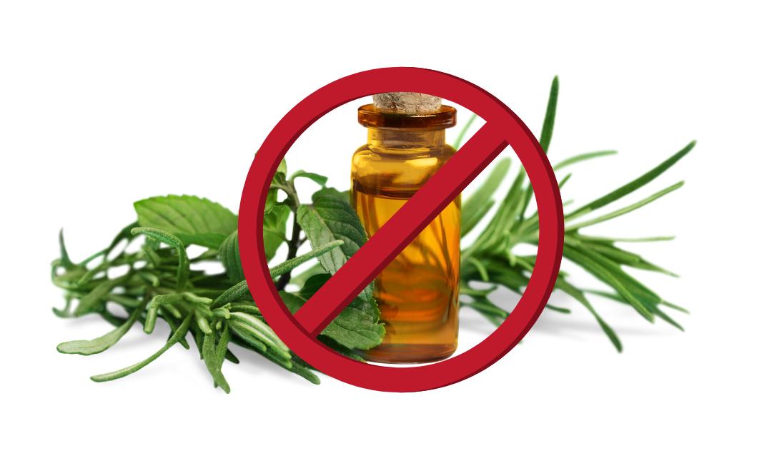 Conheça os 16 principais erros no uso dos óleos essenciais!