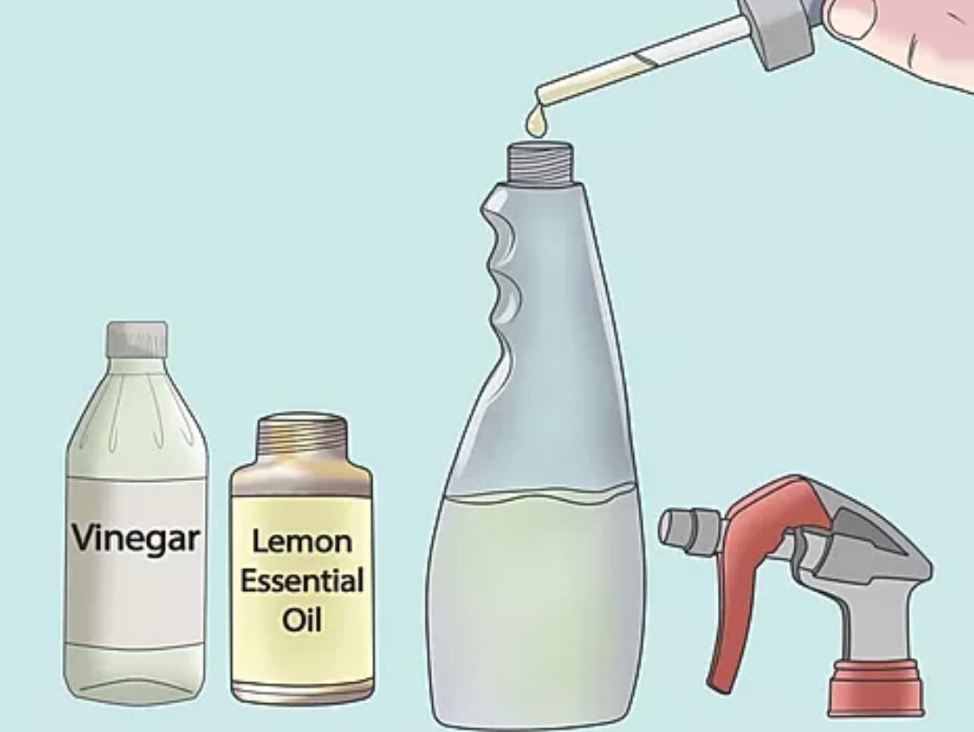 Como limpar sua casa com óleos essenciais?