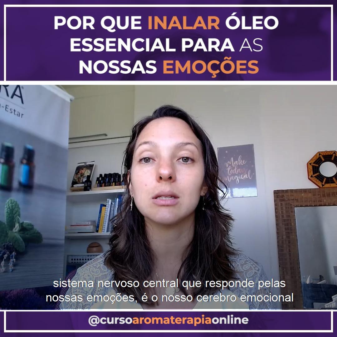 AROMATERAPIA ÓLEOS ESSENCIAIS EMOÇÕES